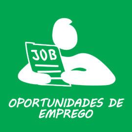 Emprego – Nova plataforma Europass para elaboração de curriculum